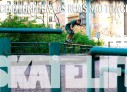 Poeta Formiga no Skatelife