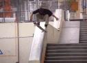 Plan B profissionaliza Chris Joslin