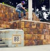 Danilo Cerezini BLVD Skateboards 2016